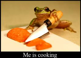 frogCooking